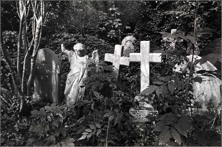 Znalezione obrazy dla zapytania tapety cmentarz